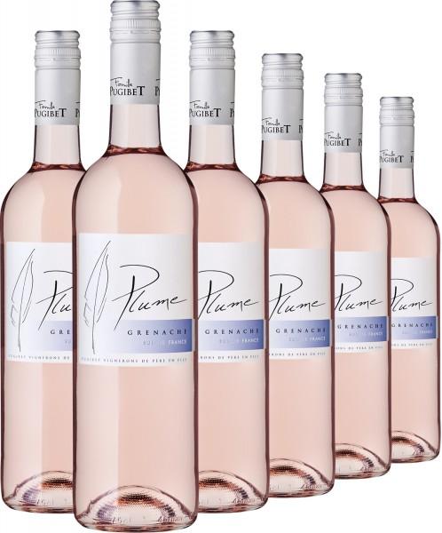 2019 Grenache Rosé, VdP, Plume - 6er Paket